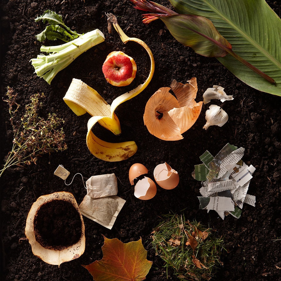 compost-101490941_1
